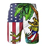 CHILL·TEK Mens Quick Dry Swim Trunks USA and Puerto Rico Flag Frog Beach Shorts Summer Casual Shorts Swimwears with Mesh Lining