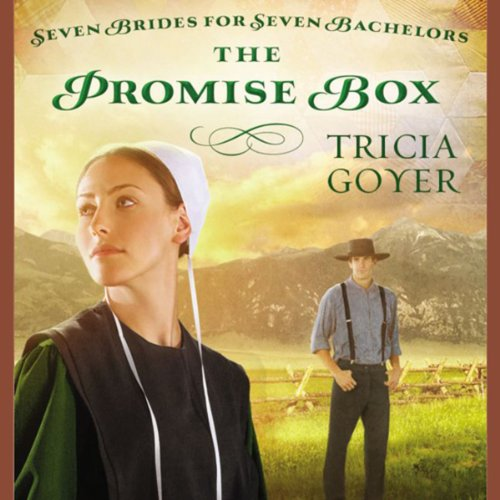 The Promise Box audiobook cover art
