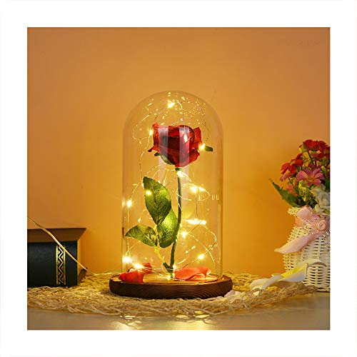 Schokoladen-Lampe, Die Schöne und das Biest, romantische konservierte frische Rose, LED, Landschafts-Lampe, Holzsockel und Glasabdeckung, für Valentinstag, Geburtstag, Hochzeit,Geschenke, eine Rose