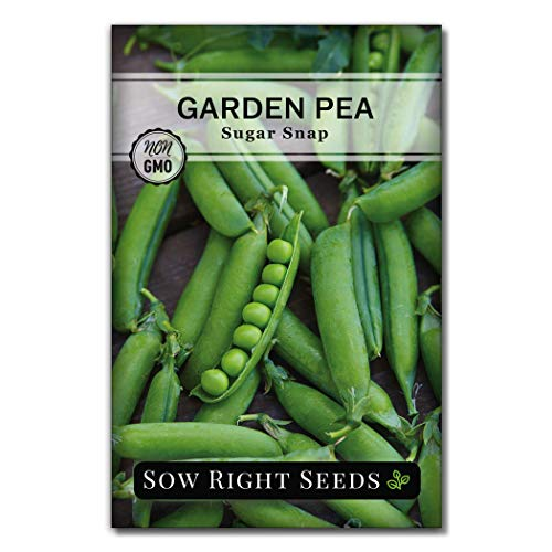 Sow Right Seeds - Sugar Snap Pea Seed for Planting - Non-GMO Heirloom Packet...