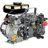 MOTOPOMPA AR 202 - 2,5 HP - POMPA IRRORAZIONE CON MOTORE A SCOPPIO PER DISERBO