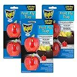 Best Fly Catchers - Raid Fruit Fly Trap Bundle, Set of 3 Review