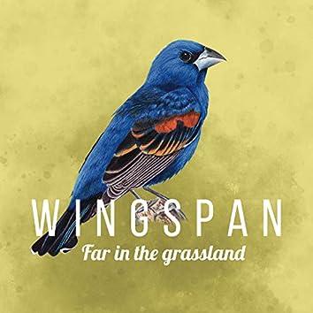 Far in the Grassland (Wingspan Original Video Game Soundtrack)
