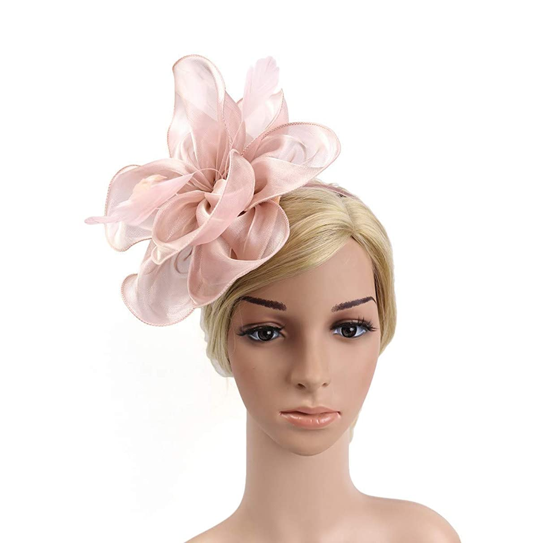 BCDshop Vintage Headpiece Headband Fascinators Hat Women Tea Party Derby Wedding Cocktail Accessory