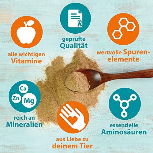 Ida Plus - Reines Bierhefe-Pulver - 3 kg - 100% Naturprodukt für Hunde, Katzen & Pferde - Futterergänzung für glänzendes Fell & kräftige Haut - reich an B-Vitaminen, Mineralien & Spurenelemente - 5