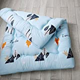 <span class='highlight'><span class='highlight'>TUTUMAO</span></span> Thickened Mattress,Warm Living Room With Tatami Mats,Foldable Sleeping Mat,Students Play The Floor Mats,Hygroscopic Breathable Bedding,Four Seasons Universal (Color : P, Size : 180x200cm)