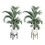 AWNIC Soporte de Plantas Expandible de Metal Macetero con Patas Soporte para Flores y Plantas de Interior de Negro Estilo Minimalista Diámetro34.5cm(Ø) Altura 14cm o 30cm,Se Ajusta Libremente