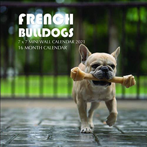 French Bulldogs 7 x 7 Mini Wall Calendar 2021: 16 Month Calendar
