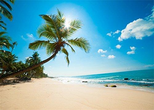 YongFoto 3x2m Vinilo Fondo Playa Fotografia Mar Paisaje Cielo Azul Nubes Blancas Palmera Telón de Fondo Infantil Fiesta Cabina de Fotos Bandera Niños Estudio Fotográfico Accesorios