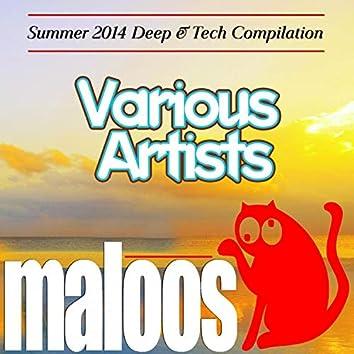 VA - Summer 2014 Deep & Tech