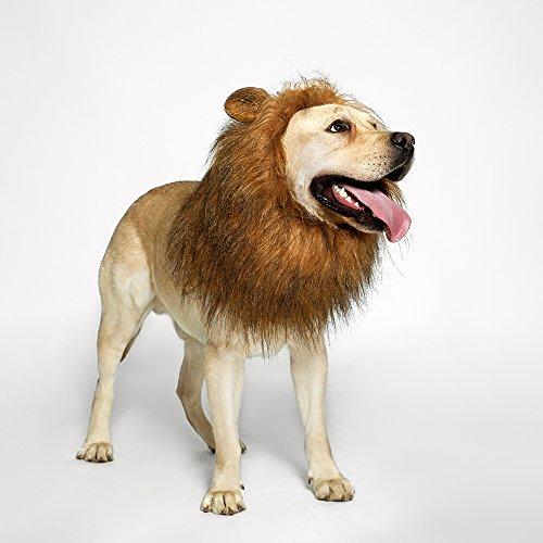 TOMSENN Dog Lion Mane - Realistic & Funny Lion Mane for Dogs -...