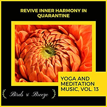 Revive Inner Harmony In Quarantine - Yoga And Meditation Music, Vol. 13