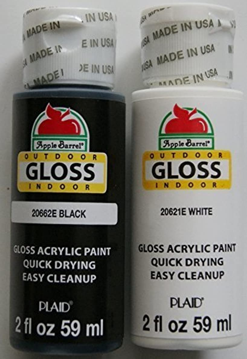 Apple Barrel Acrylic Paint Outdoor Indoor Gloss Set - Black and White (2 Ounces Each)