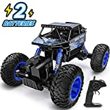 YEZI RC Car 1:18 Large Scale,2.4Ghz All Terrain Waterproof Remote...