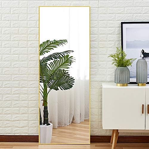 """NeuType Full Length Mirror Standing Hanging or Leaning Against Wall, Large Bedroom Mirror Floor Mirror Dressing Mirror Wall-Mounted Mirror, Aluminum Alloy Thin Frame, Brushed Matte Gold, 65""""x22"""""""