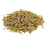 Rinderohr - Mehlwürmer 1kg