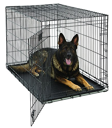 XL Dog Crate | MidWest Life Stages Folding Metal Dog Crate | Divider Panel, Floor Protecting Feet,...