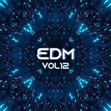 EDM, Vol.12