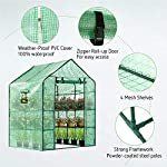 Vivosun 57x57x77-inch mini walk in green house with window and anchor plant garden hot house 2 tiers 8 shelves 13 multi-shelves, large space- crafted with 8 wired shelves, overall dimension:57x57x77-inch, our vivosun green house is large enough for starting seed, sprouting young plants, blooming flowers and cultivating fresh vegetables; 3 tiers and different height between each shelf provide a possibility to grow both small and large plants side by side roll-up entrance & windows- zippered roll-up entrance at the front provides an easily access to the greenhouse and a bigger operating space; 2 side windows bring a better air circulation of the green house, even if in hot weather, your lovely plants can breath fresh air; and the custom meshes on the window effectively isolate the pests from harming plants high-quality & long life time pe cover- our vivosun greenhouse is double-stranded edge banding, making the cover more tough and more durable; thanks to the anti-cold agent added in the cover, its lifetime is 3 months more than usual cover; in addition, our high-quality pe cover can prevent the harm from uv and bad weather but offering the best solar performance, which will nourish your plants very well
