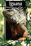Iguana: quaderno a righe / tema rettili / 100 pagine.