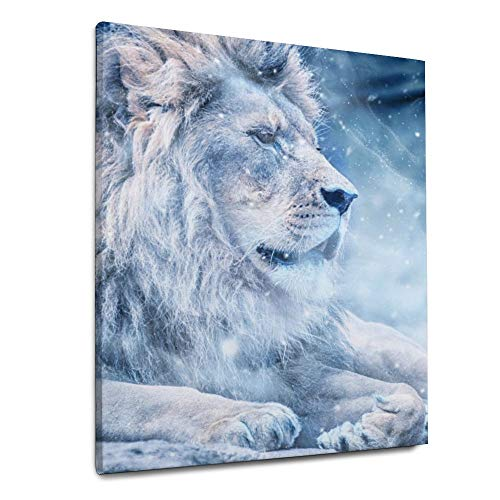 Indoor Canvas Prints Wood Framed Lion Snow Lying Down Art Animal Nature for Home Decor 20x24 Inches Wall Art Ready to Hang
