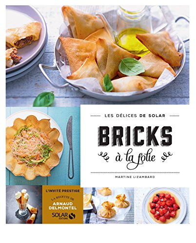 Bricks à la folie - Les délices de Solar (French Edition)
