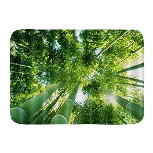 Throwpillow Tapis de Bain Antidérapant Forêt de bambous Vert Nature Lavable Salle de Bain carpettes