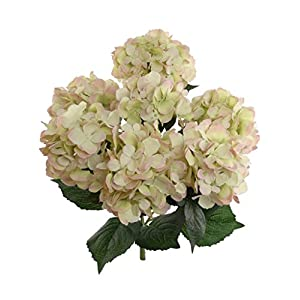 Hydrangea Silk Flowers Plant, Green Pink, Indoor Home Decoration, Outdoor Plant, Wedding, Centerpieces, Bouquets, Artificial Hydrangeas Bush with 7 Large Gorgeous Bloom Clusters, Leaves, Stems
