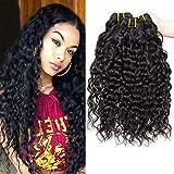 PF Hair 9A Brazilian Hair Bundles Water Wave Virgin Human Hair Weave Bundles Brasilianische Wasserwelle Menschliche Haare 3 Bündel 10 12 14 Zoll 300g Natürliche Schwarze Farbe