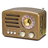 PRUNUS J-160 Retro Transistor Radio Battery Operated AM FM SW Radio, Small Rechargeable Portable Radio with 1800mAh Li-ion Battery, Support TF Card/Aux/USB MP3 Player(Gold)