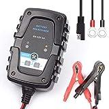 Swiftswan FOXSUR 6V 12V 1A automatisches intelligentes Batterieladegerät für Motorräder und Autos...