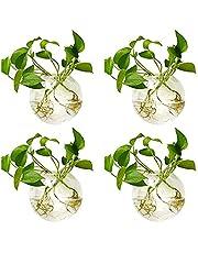 Nuptio 4 st vägghängande glaskrukor 4 tum diameter rund glasväxt kruka – vattenplanteringsvaser luftblomma vas växt terrarium växt behållare 4 Pcs stil 1