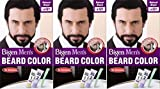 Bigen B101 Lot de 3 barrettes à barbe pour homme Noir naturel