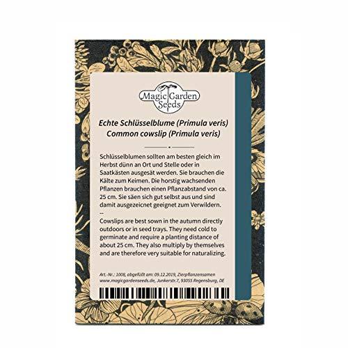 Echte Schlüsselblume (Primula veris) 200 Samen Himmelschlüssel Wiesen-Primel
