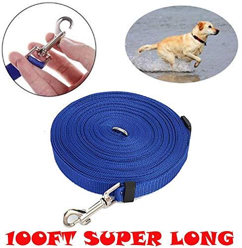 Pet Dog Cat Grooming Haartrockner Professional 2800W Einstellbare Windtemperatur Geräuscharmer ausziehbarer Schlauch 3 Düsen Leistungsstark