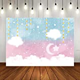 Twinkle Twinkle Little Star Gender Reveal Backdrop Pink or Blue Baby Shower Photography Background 7x5ft Glitter Star Moon Clouds Boy or Girl Newborn Baby Birthday Party Decorations Photo Booth Props