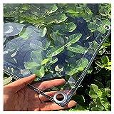 HAI RONG Lona transparente de plástico PVC impermeable con ojales, 400 g/m², cubierta de hojas, impermeable, 39 tamaños, color transparente, tamaño: 2 x 2 m)