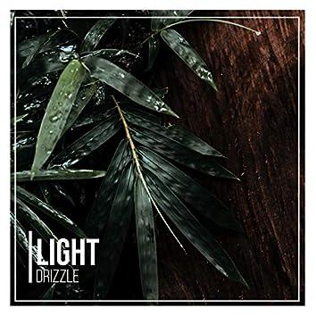 # 1 A 2019 Album: Light Drizzle