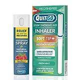 QuitGo - Kit de doble apoyo para dejar de fumar, con inhalador de punta suave, sin humo, alivio de hierbas y spray de recuperación para ayudar a dejar de fumar., Dual Pack, Menta fresca
