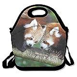 Almuerzo Tote rojo pandas loncheras bolsas de almuerzo bolso almacenamiento de alimentos se adapta a la escuela viaje trabajo al aire libre