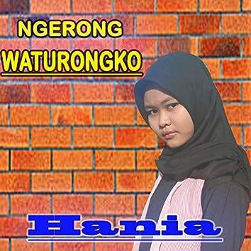 Ngerong Waturongko