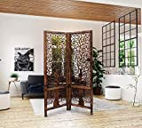 Measurement : 40 x 20 x 72 IN, Color : Brown : Material : Wood To divide rooms, creating a more efficient use of the space within the room. As decorators and/or accent pieces to add character to room space. To hide areas of different usage or privacy...
