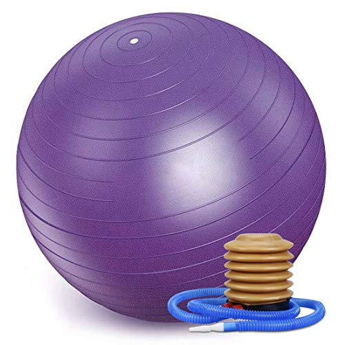 WTSMJD Pelota Pilates Pequeña PVC Anti Pinchazos Pelota Yoga Balón Pilates para el Ejercicio, Gimnasio, Fitness, etc. con Bomba de Mano,Morado,75cm