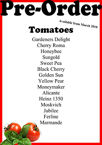 6 X Mix and Match Tomate Plug plantes – Pre-order Mars 2018–1 P & P