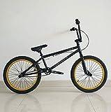 MIAOYO Adultos 20 Pulgadas Bici Profesional BMX, ACCIÓN DE ACCIÓN BMX BICICLETE, Adecuado para Principiantes A Nivel Avanzado Bicicletas De Calle BMX 25 * 9T,b