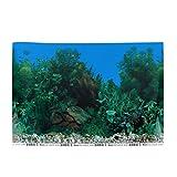 Balacoo Acuario depósito fondo papel pintado 3D adhesivo estático pegarse fondo subacuático imagen decoración paisaje póster 42 x 30 cm