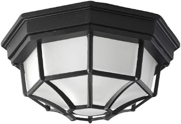 DBS UK Direct stock discount Ceiling Light Fixture Max 50% OFF Metal Cage Waterproof Retro