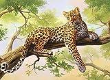 DIY Pintura al óleo Árbol y leopardo Pintar por Numeros Kits para Adultos y Niños Pintura acrílica y 3 Pinceles 16 * 20 Pulgadas Sin Marco