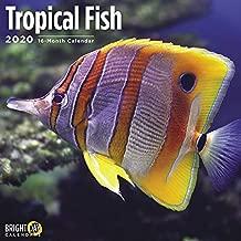 Tropical Fish Wall Calendar 2020