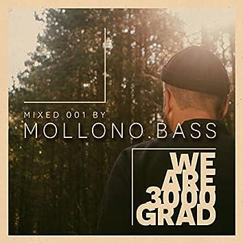 We Are 3000Grad ( Mollono.Bass DJ Mix )